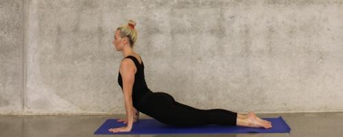 ioga-.PNG